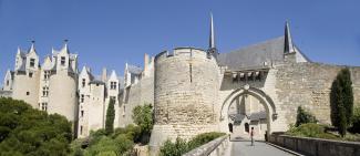 Visite chateaux de la loire en anjou tourisme en val de loire - Office de tourisme montreuil ...