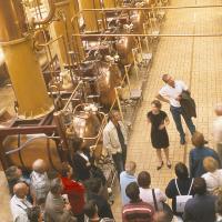Visites d'entreprises en Anjou