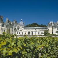 Des châteaux au coeur du vignoble