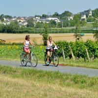 Les itinéraires autour du vignoble