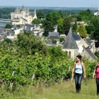 Grandes randonnées GR® en Anjou