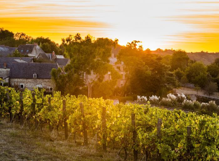 J2 Anjou Vignoble et Villages