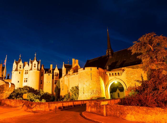 de visiter le château de Montreuil-Bellay