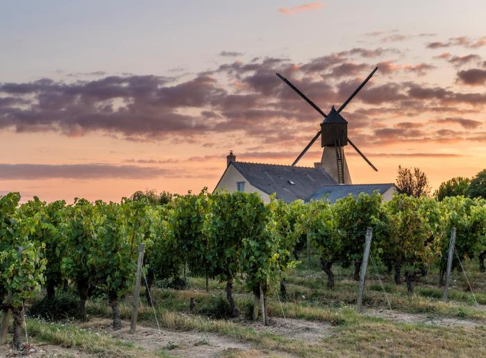 Les moulins de l'Anjou