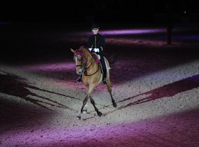Gala du Cadre noir à Saumur