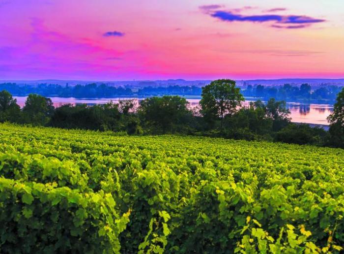 Sur les routes des vins & villages