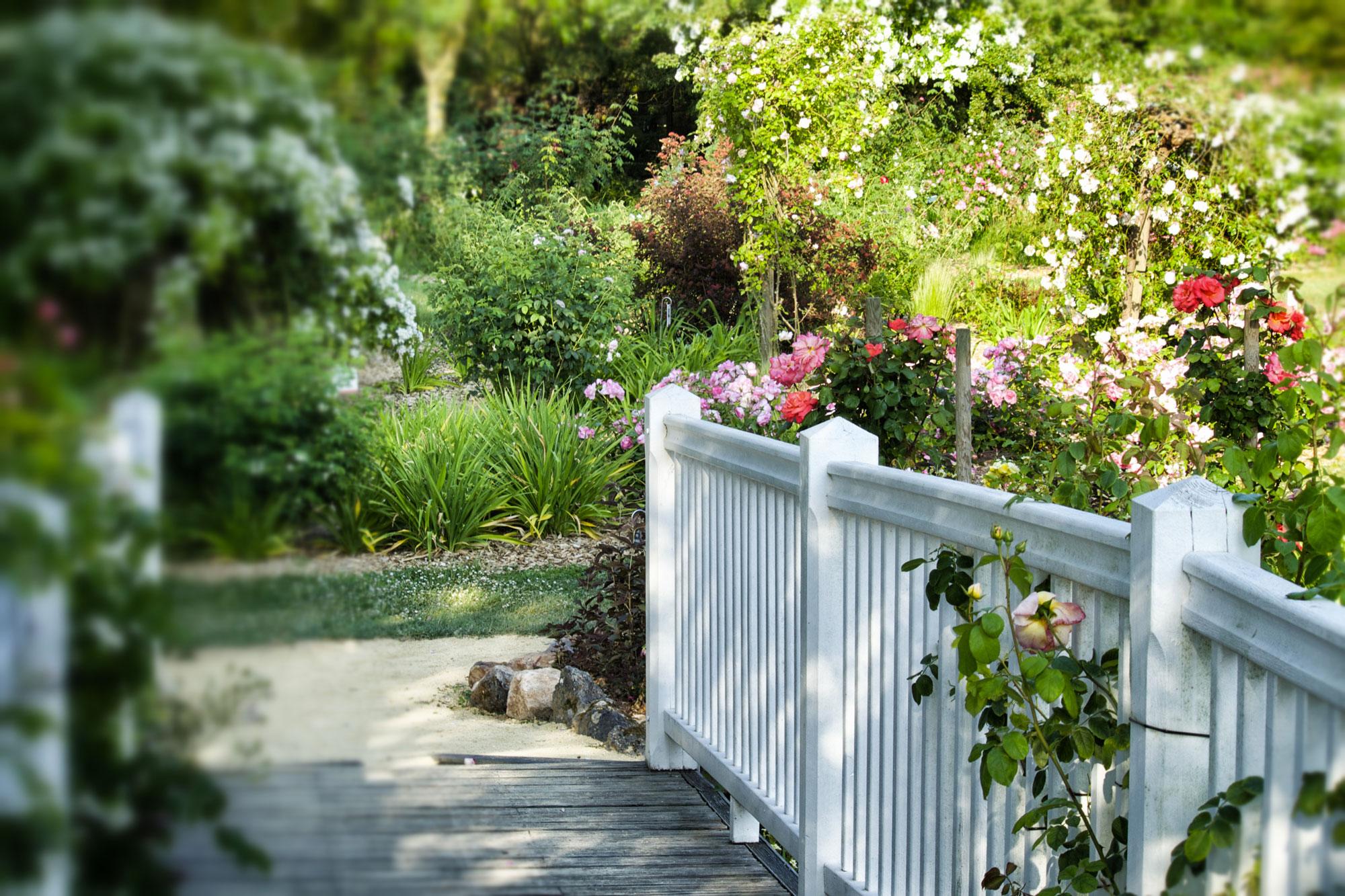 Parcs et jardins en anjou d couvrez les parcs a visiter dans le maine et loire - Jardin de la rose doue la fontaine ...